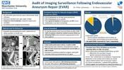 Audit of Imaging Surveillance Following Endovascular Aneurysm Repair (EVAR)